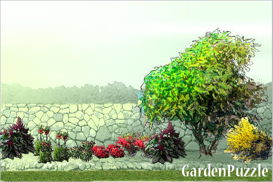 Garden design:By the wall - Spring