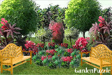 Garden design:summer to come