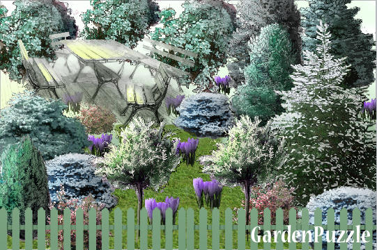 Garden design:first signs of spring - Spring