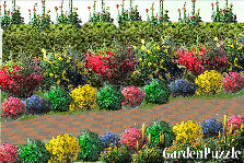 Garden design:walk with me