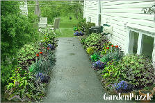 Garden design:side perrenials