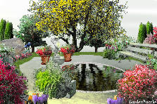Garden design:relaxing pond