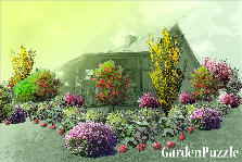Garden design:Country cabin