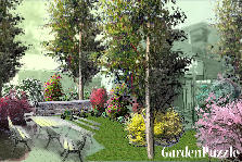 Garden design:A backyard 1
