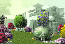 Garden design:Backyard 2