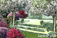 Garden design:Backyard 3