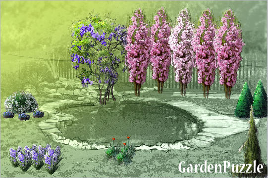 Garden design:my first garden - Spring