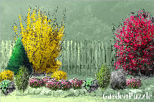 Garden design:Garden Wall on left of property