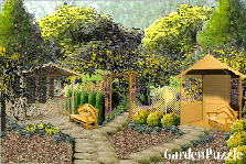 Garden design:deep in the forest
