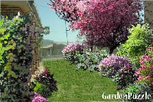 Garden design:in my garden...