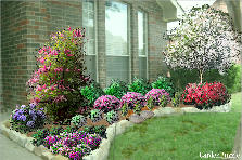 Garden design:Carlile Property-right