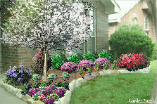 Garden design:Carlile Property-right(Dogwood)