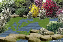 Garden design:swamp lands