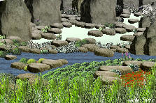 Garden design:riverpass
