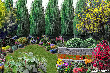 Garden design:My private garden!!!