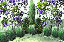 Garden design:science