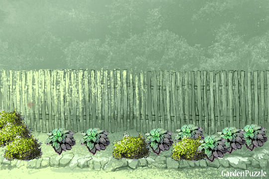 Garden design:house wall  - Spring