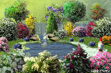 Garden design:a backyard dream