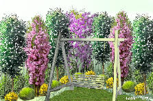 Garden design:swing in my garden