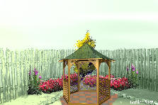 Garden design:Backyard