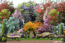 Garden design:jus my magination...