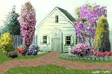 Garden design:Cottage
