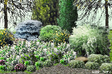 Garden design:my lily of the valley