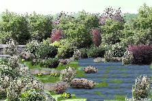 Garden design:Water is life