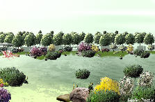 Garden design:Water is life. The river beach.