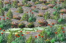 Garden design:Tuscan trail inland
