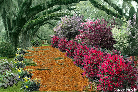fall colors - GardenPuzzle - online garden planning tool