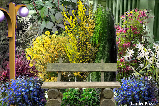 Garden design:the bench - Spring