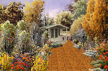 Garden design:Autumn out your frontdoor