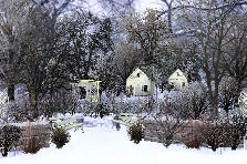 Garden design:Hello Winter