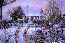 Garden design:I'm dreaming of a white Christmas......