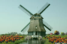 Garden design:Dutch Windmill