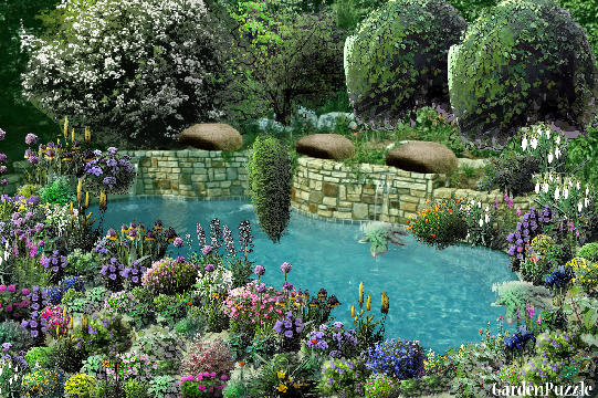 Garden design:flower pool - Spring