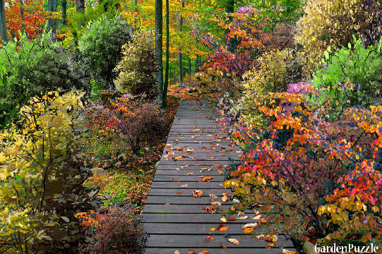 Garden design:I love Autumn! - My version - Autumn
