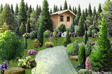 Garden design:In the forest...