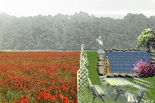 Garden design:Fields of Poppies Stone Garden 