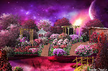 Garden design:Colorful World