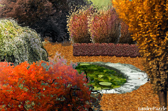 Garden design:COLORS OF AUTUMN - Autumn