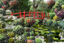 Garden design:red bridge