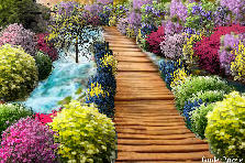 Garden design:Bridge to beauty