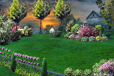 Garden design:sunset