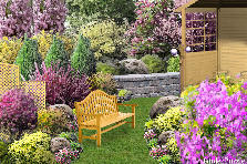 Garden design:Romantic corner..