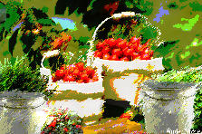 Garden design:Life Sometimes is a Bucket Full Of Cherries 1