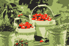 Garden design:Life Sometimes is a Bucket Full Of Cherries 2
