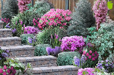 Garden design:stairs to the...