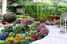 Garden design:flower's path